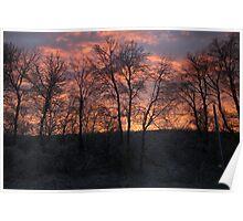 Frosty sunset Poster