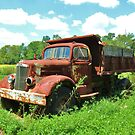 Out To Pasture by Ron Russell