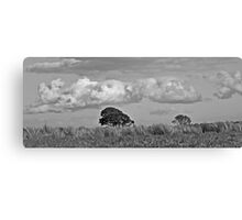 Cloudiness Canvas Print