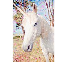 Avis's Unicorn Photographic Print