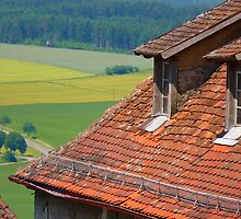 Roof Brick House Roof Roofing Red by HQPhotos
