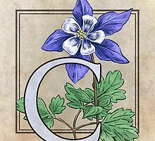 C is for Columbine - card by Stephanie Smith