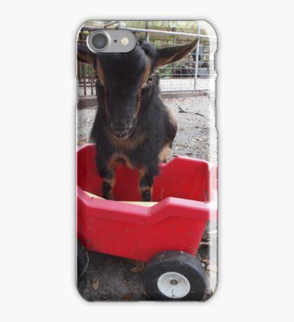 Goat Play- Lafayette iPhone Case/Skin