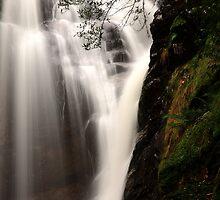 mathinna falls. northeast tasmania, australia by tim buckley | bodhiimages