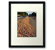 Peanut Peanuts Food Framed Print
