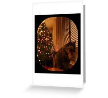 Christmas Kitty Waiting for Santa Greeting Card