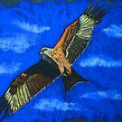 Red Kite by Dawn B Davies-McIninch