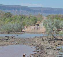 Bluey O'Malleys crossing, Pentecost River, Kimberley, W.A. Sticker