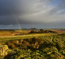 Hadrian's Wall on Winshields Crag by Joan Thirlaway