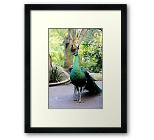 WONDER ON THE EARTH ! Framed Print
