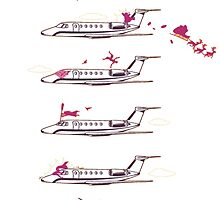 Airplane by Park Jennifer