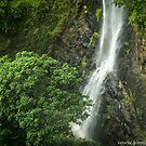Waterfall I by -aimslo-