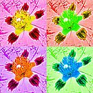 FlowerPOP by kcblack