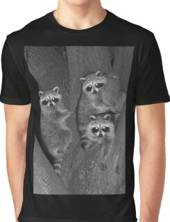 Three Baby Raccoons Graphic T-Shirt