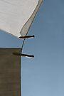 In the wind... by Gisele Bedard