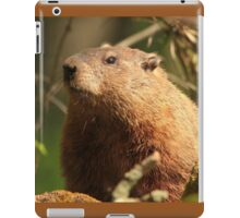 Close Encounter with a Groundhog iPad Case/Skin