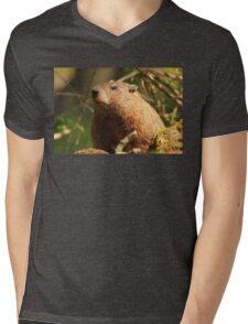 Close Encounter with a Groundhog Mens V-Neck T-Shirt