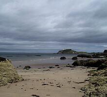 Fidra island by pantherart