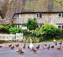 Mother Goose Goes House Hunting  by Susie Peek