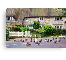 Mother Goose Goes House Hunting  Canvas Print