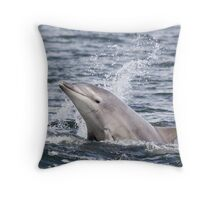 Moray Firth Dolphin Calf Throw Pillow