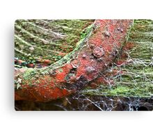 Deteriorating with Time Canvas Print
