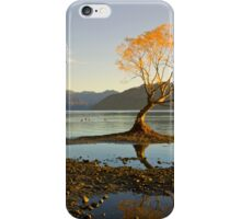Morning glory iPhone Case/Skin