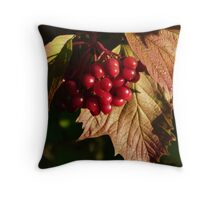 Red Berries and Leaves Throw Pillow