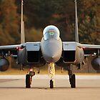 McDonnell Douglas F15 E Strike Eagle at RAF Lakenheath. by Clare Scott
