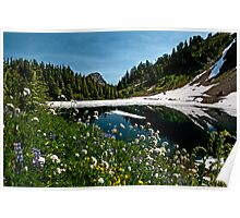 Twin Lakes in Summer - Mt. Baker-Snoqualmie N. F.  Poster
