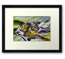 If miss piggy could see me now. Framed Print