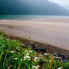 Beach View by Fredda Gordon