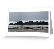 Seal Rocks Greeting Card