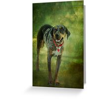 Catahoula Leopard Greeting Card