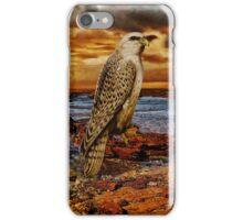 Falcon iPHONE Case iPhone Case/Skin