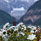 Flower Garden at Lake Louise by Vickie Emms