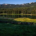 Beaver Lake, Colorado by Susan Humphrey