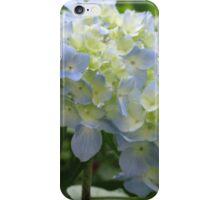 Spring Hydrangea iPhone Case/Skin