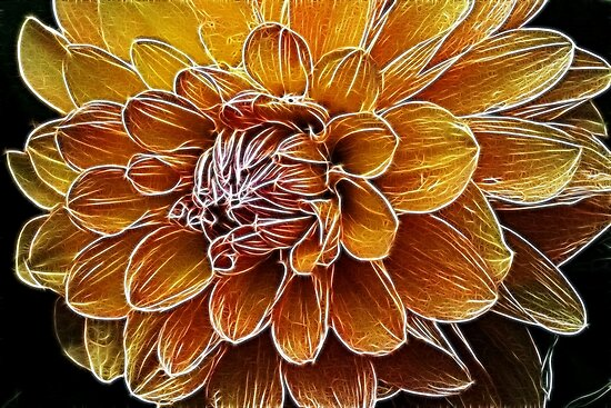Razzle Dazzle Dahlia by Monnie Ryan