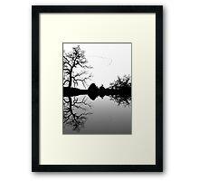 Wild Geese V Formation Framed Print