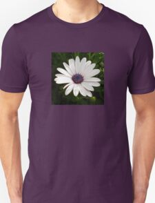 Beautiful Osteospermum White Daisy With Purple Center  T-Shirt