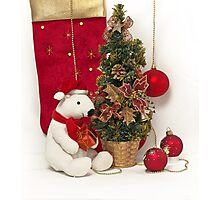 White Teddy Bear  with red Christmas Baubles and Christmas tree  Photographic Print