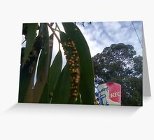Gum leaf with bumps Greeting Card