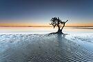 """Singularity"" ∞ Nudgee Beach, QLD - Australia by Jason Asher"
