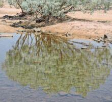 Pentacost River, Kimberley, Western Australia Sticker