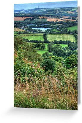 View from Otley Chevin #2 by Colin Metcalf