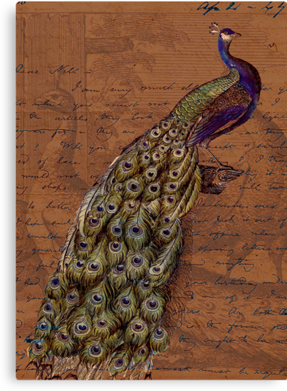 Glory of the Peacock #1 by Sarah Vernon