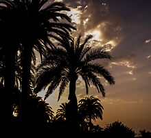 Mediterranean sunset by Miquel  Gil