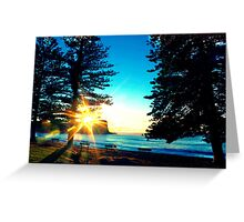 Sunrise between the Pine Trees Greeting Card