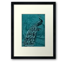 Glory of the Peacock #2 Framed Print